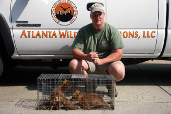 Animal Trapping services keep people safe