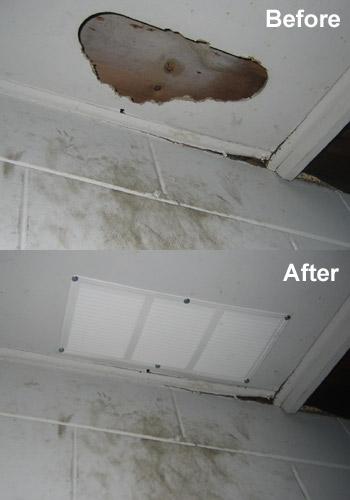 Animal Damage Control Repairs
