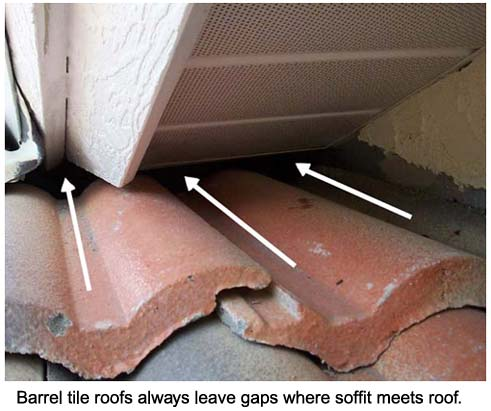 Problems With Barrel Tile Roof Rats Amp Squirrels Get